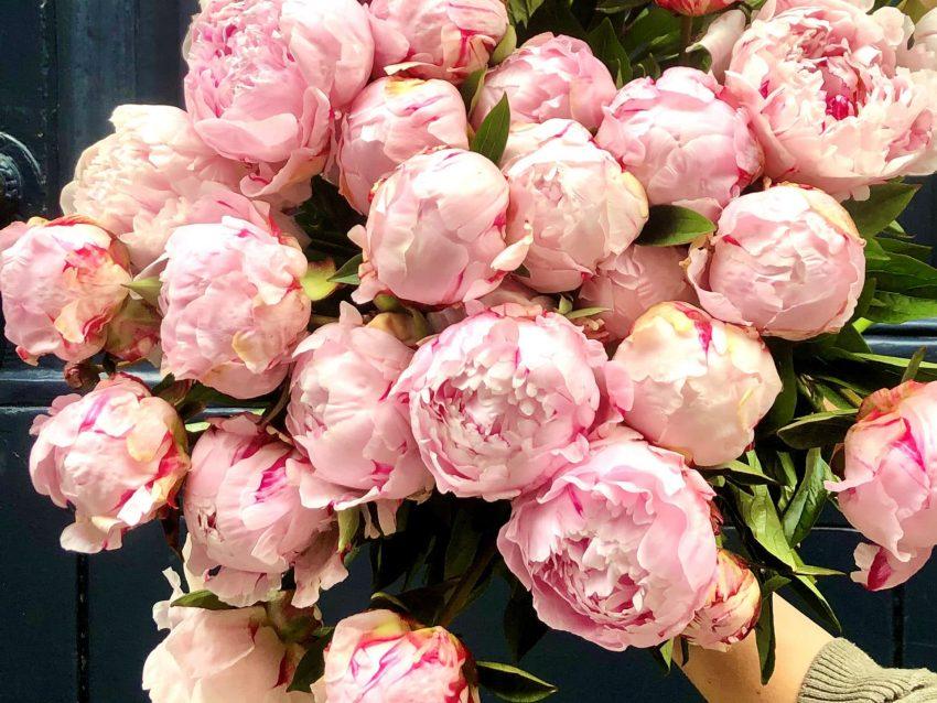 Bouquet de fleurs fraîches brassée de pivoines