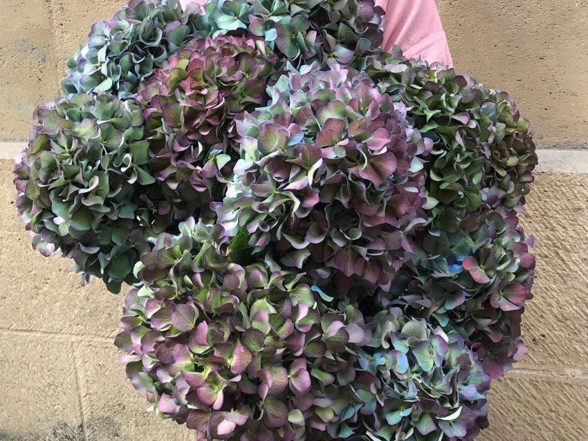 Bouquet de fleurs fraîches brassée hortensias