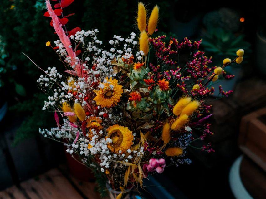 bouquet fleurs séchées coucher de soleil
